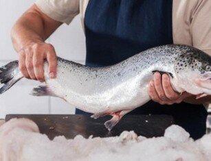 Особенности состава и противопоказания лосося